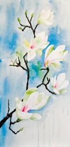 Magnolienblüten (gerahmt; 32x62 cm, Fr. 350.-)