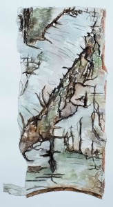 Birkenrinde (gerahmt; 50x60 cm, Fr. 350.-)