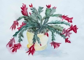 Blühender Kaktus