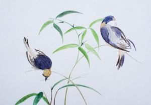 Vögel im Bambus